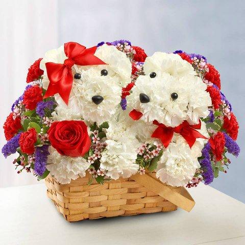 7 Delightful Flower Arrangements For The 7 Types Of Dog ...