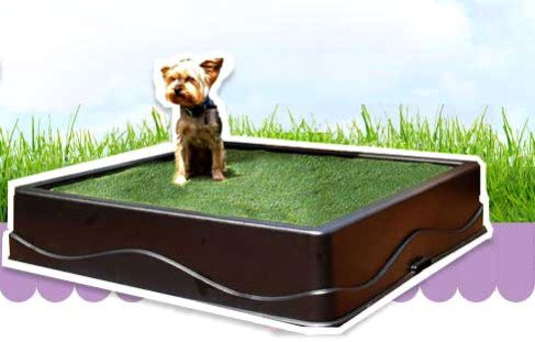 Doggy Solutions Pet Patio Potty