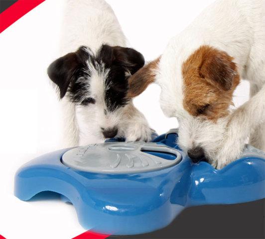Aikiou Interactive Dog Bowl: © Aikiou Company