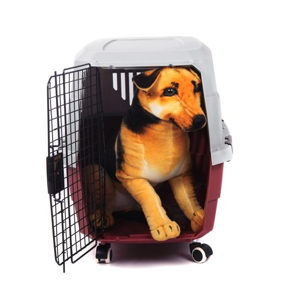 Favorite Airline Dog Carrier