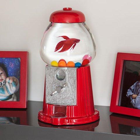 Gumball Machine Fishbowl