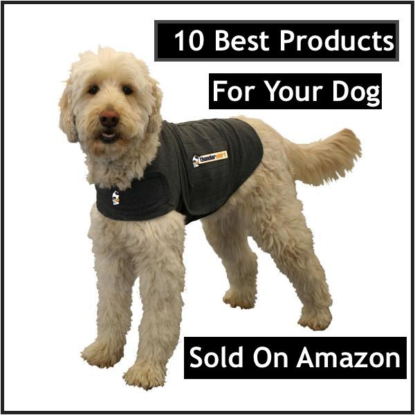 Best products for your dog sold on Amazon