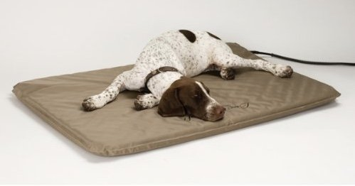 outdoor heating pad for dogs