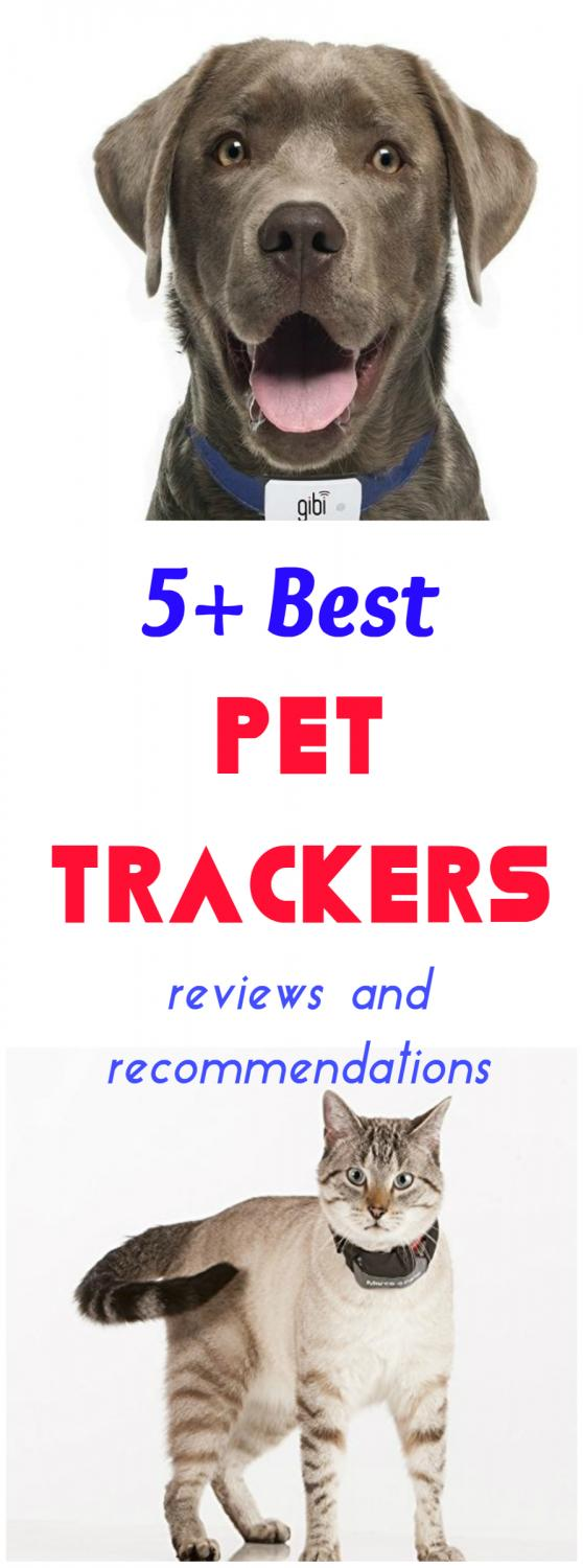 Reviews of 5+ Best Pet Trackers - PetsLady.com