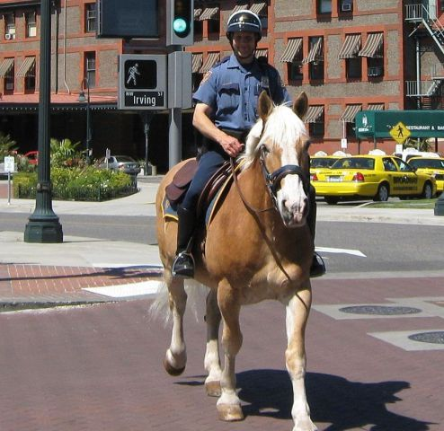 Portland Police Mounted Unit (Photo by Jeff Muceus via Wikimedia/Creative Commons)
