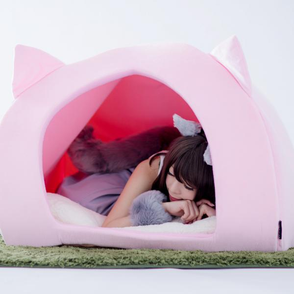 Human Pet House Is A Pet Bed For Pet-Loving People