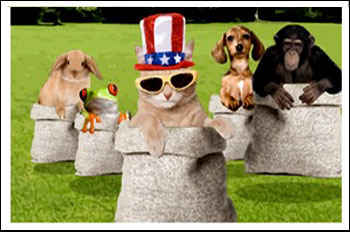 July 4th eCard, Multi-pet & animal version: © Sloppy Kiss Cards