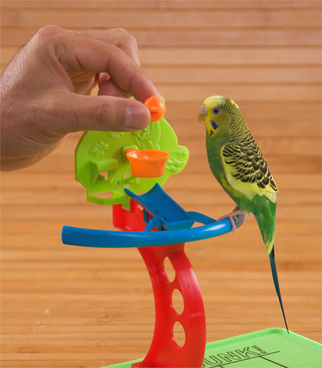 Игрушки волнистому попугаю своими руками 66