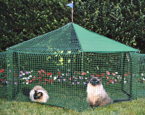 Kittywalk Pet Gazebo: 'Catios' are perfect for keeping small pets safe outdoors