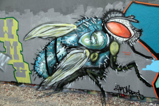 La Mouche by Chromers: The Mooch, one some fly Fly art by Chromers.