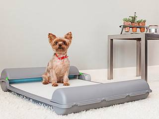 A Self Cleaning Indoor Potty Invention