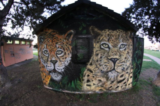 Leopard Graffiti by Chromers: Here are some big cat graffiti art images by Chromers