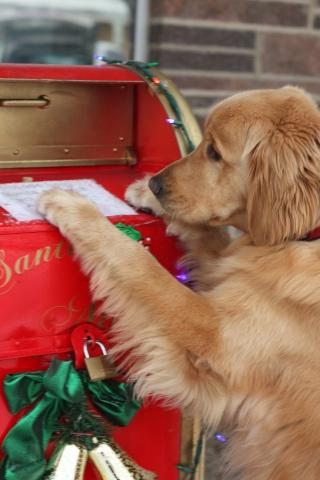 I Hope My Letter Gets To Santa In Time (Image via Pinteret)