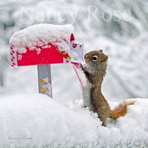 Ooooo, More Christmas Cards (Image via Pinteret)