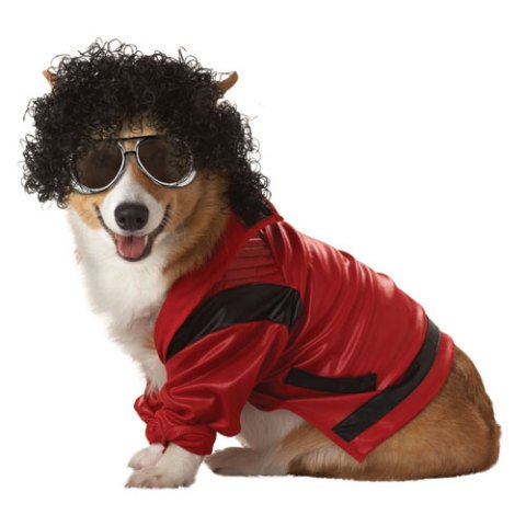 King of Pop Dog Costume