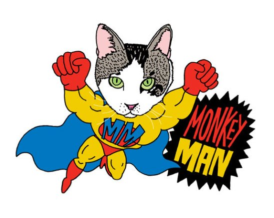 Monkey Man cat: by Pets Are Superheros