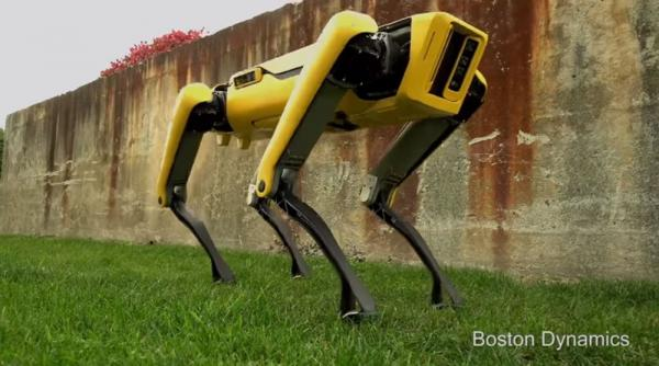 Robots patterned after nature