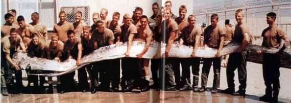 Oarfish found by Navy Seal trainees in 1996 (Public Domain Image)