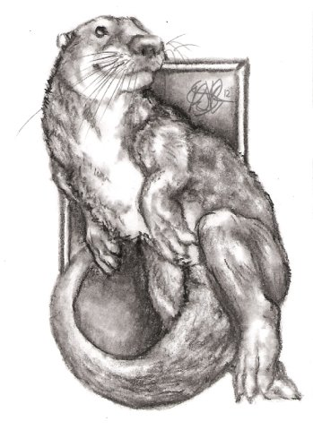 Otter Acero by Garcia: Otter animal drawing by Garcia.
