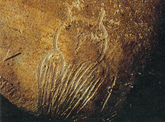 Owl drawing from Paleolithic cave: image via philosophytree-breanne.blogspot.com
