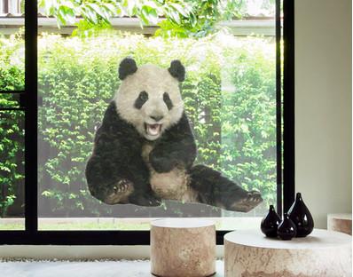 Laughing Panda Window Mural