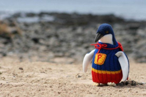 Penguin Sweaters (You Tube Image)