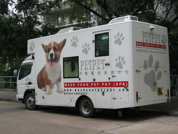 The Top 10 Mobile Pet Grooming Vans
