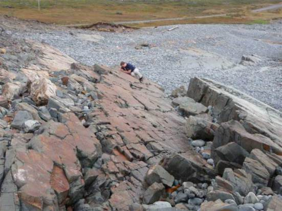 Mistaken Point Ecological Reserve, Newfoundland, where researchers discover ancient forms of animal life: Credit: Oxford University, Alex Liu, via livescience