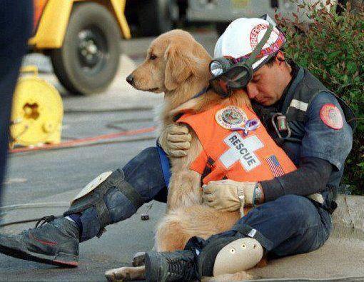 Rescue Dog Comforts Rescuer (Image via Facebook)