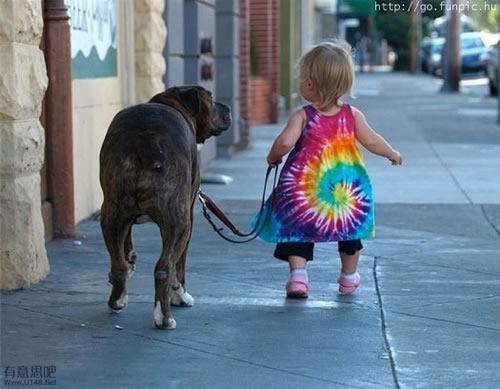 Dog Walking a Toddler (Image via La Dolfina)