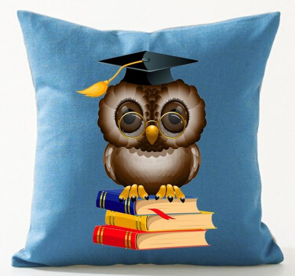 Funny Owl Throw Pillow Case