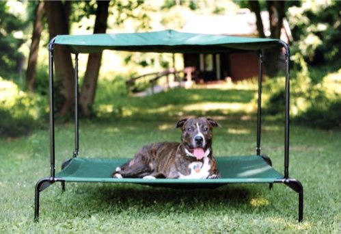 Puppywalk Green Breezy Ultra: Providing shade to pets in summer is critical