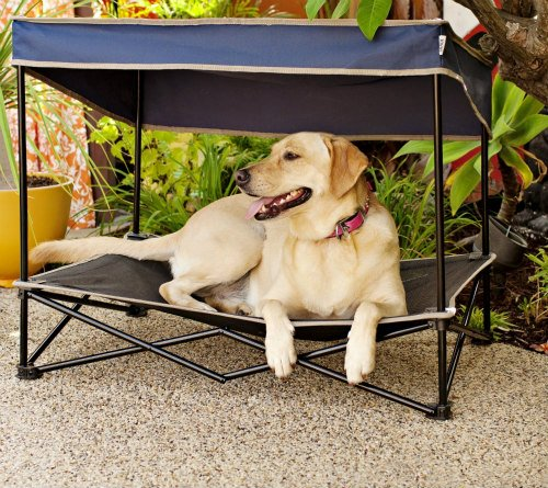 Quik Shade's Outdoor Instant Pet Shade: Elevated beds keep pets cooler