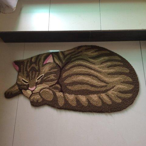 Sleeping Cat Area Rugs -- Grey Cat