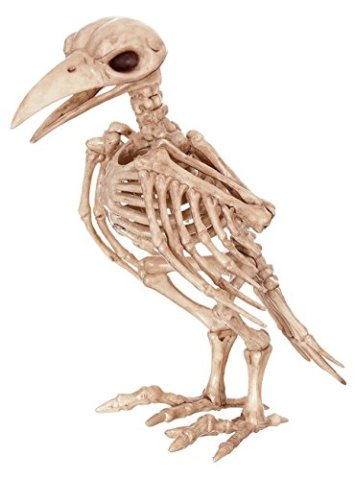 Crow Skeleton