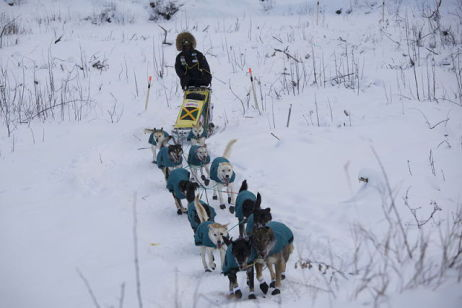 Newton Marshall Mushing in 2009 Yukon Quest (Photo by Carole Melville/Creative Commons via Wikimedia)