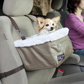 New Jersey Car Dogs Law