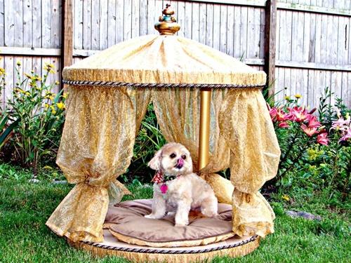 Cabana Dog Abode