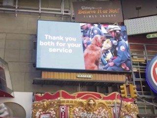 Bretagne Honored at Times Square: image credit: BarkBox