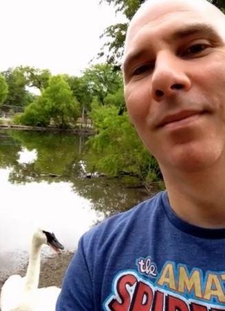 Swan Selfie (You Tube Image)