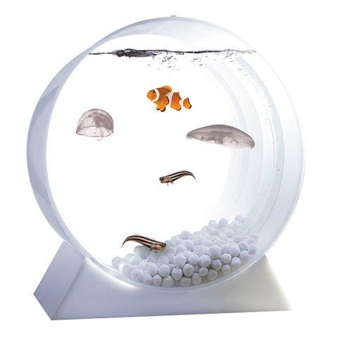 Desktop Jellyfish Tank
