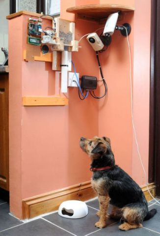 """This machine gives Toby a """"tweet treat"""" every time he gets a tweet on his Twitter page.: Picture by Ben Stevens/Wales News Service"""