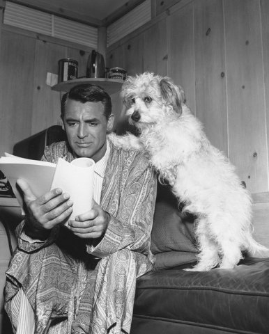 Cary Grant and Sealyham Archibald: Source: Tumblr. com