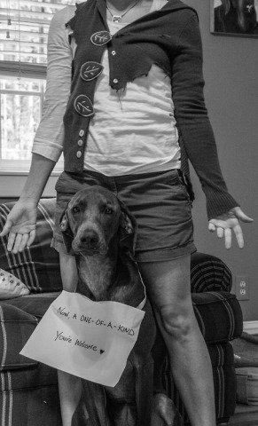 Shamed Dog, Sweater girl: image via dog-shaming.com/