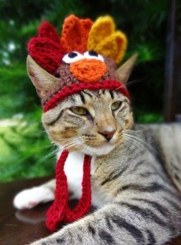 Happy Freakin' Thanksgiving (Photo via Pinterest)