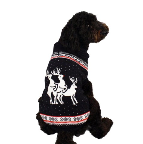 Naughty Reindeer Christmas Dog Sweater