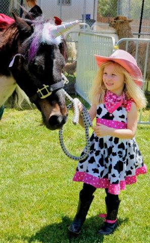 Unicorn Horn For Horses
