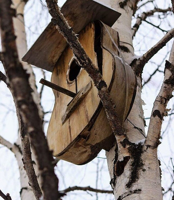 The Top 10 Weird & Bizarre Birdhouses