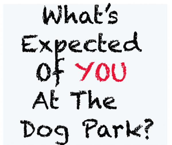 What's expected of you at a dog park?