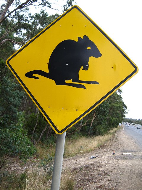 Weird Pademelon Road Crossing Sign